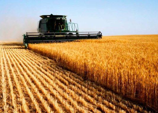 Механизм государственной помощи аграриям