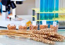 Институт орошаемого земледелия НААН Украины