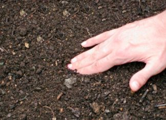 подготовка почвы под озимые