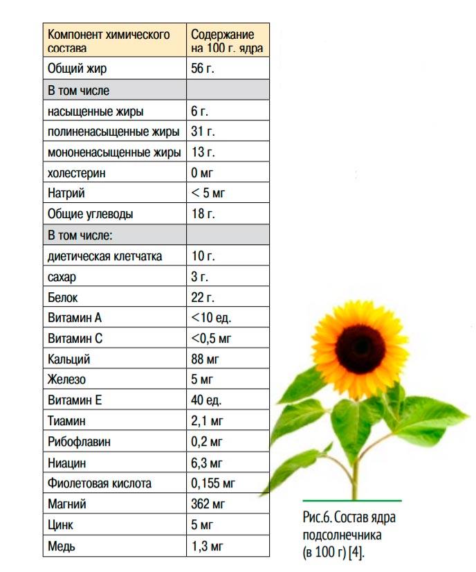 состав ядра подсолнечника