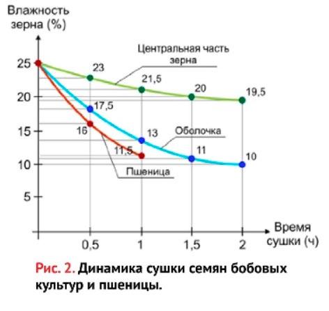 динамика сушки семян бобовых культур и пшеницы