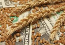 аграрные расписки все за и против