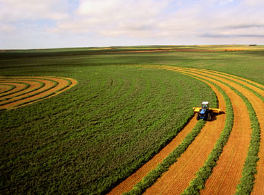 Как фермеру не потерять землю полученную в постоянное пользование4