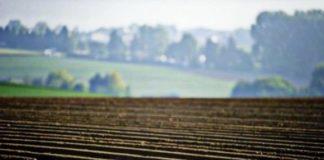 мароторий на продажу земли в Украине