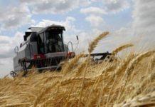 МОЖНО ЛИ Сельхозпредприятию подавать ЗАЯВЛЕНИЕ НА ДОТАЦИЮ ПОСЛЕ 25го числа
