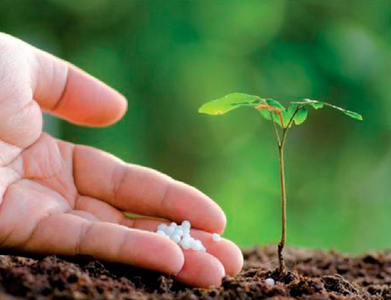 обработка почвы под посев сои