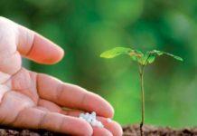 обработка почвы под сою