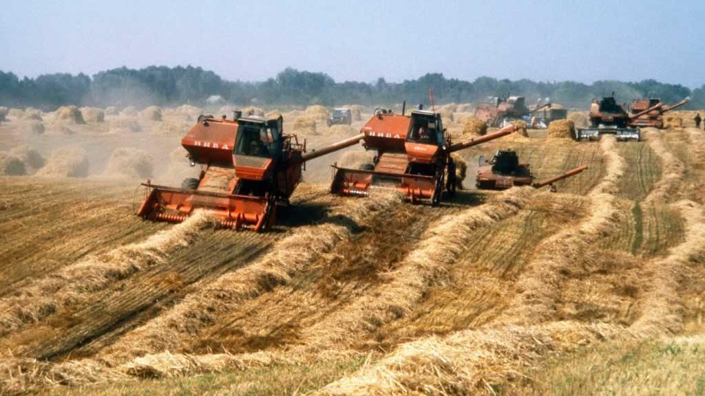 комбайны убирают урожай
