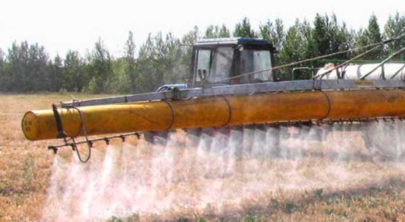 выращивание подсолнечника в Украине